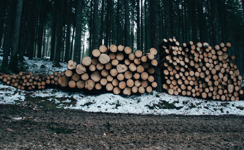 Le bois comme solution de chauffage