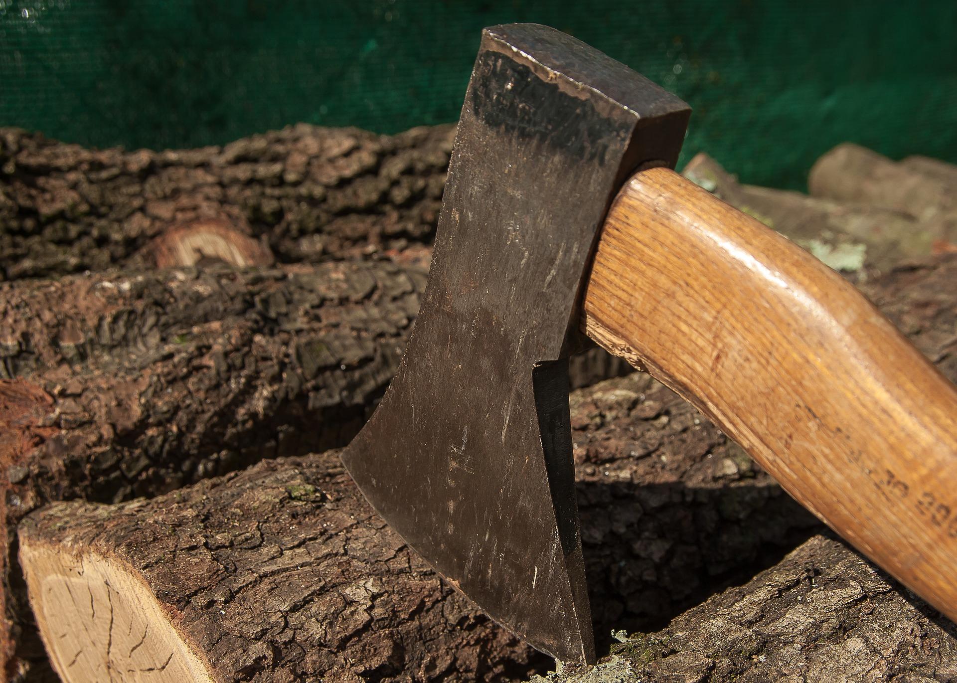 Les avantages économiques et écologiques du bois pour son projet