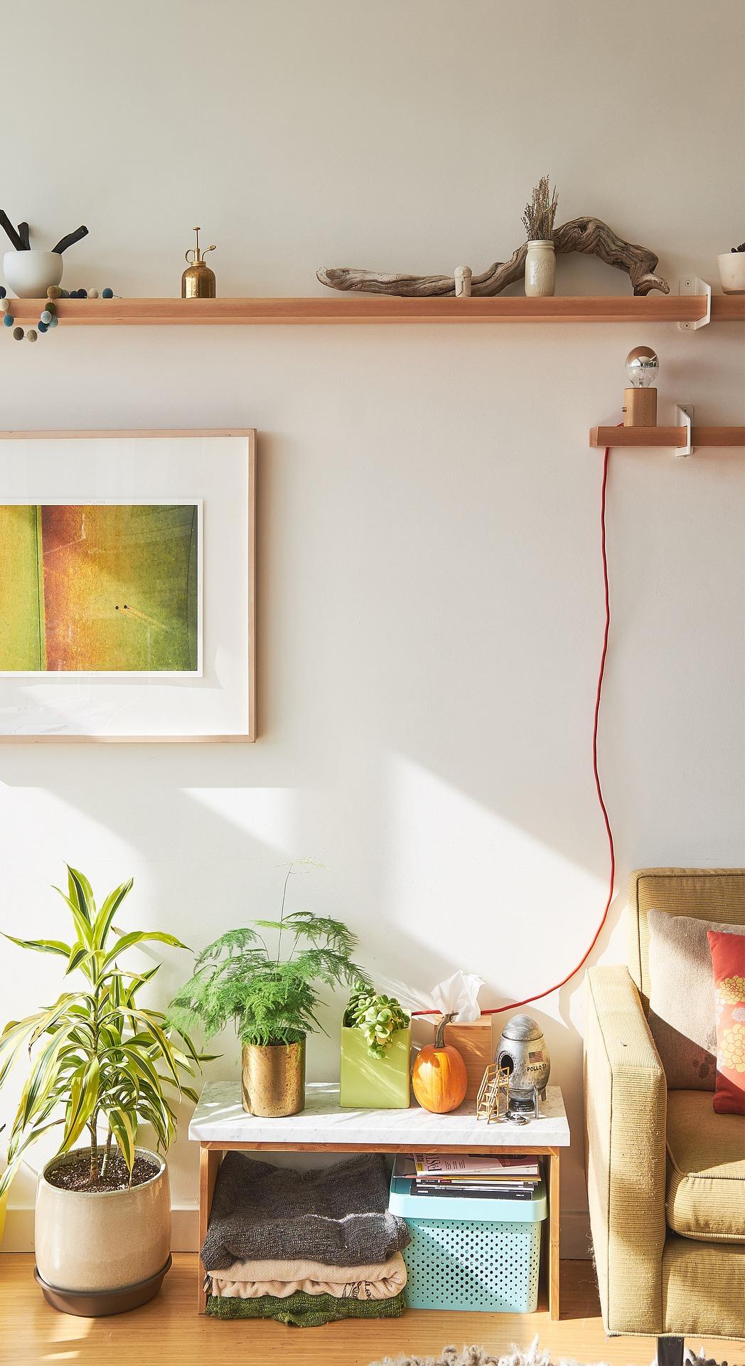 Comment décorer son intérieur avec des plantes ?