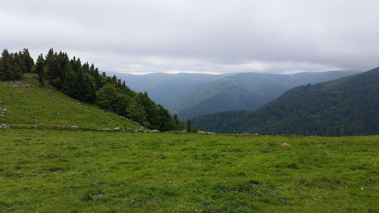 Votre séjour dans les Vosges