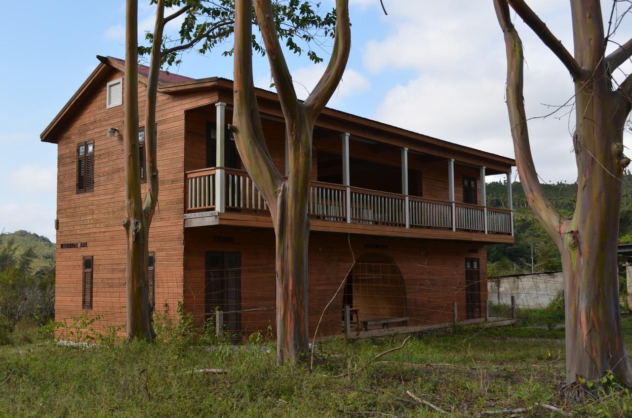 Maison ossature bois: bonne ou mauvaise idée?