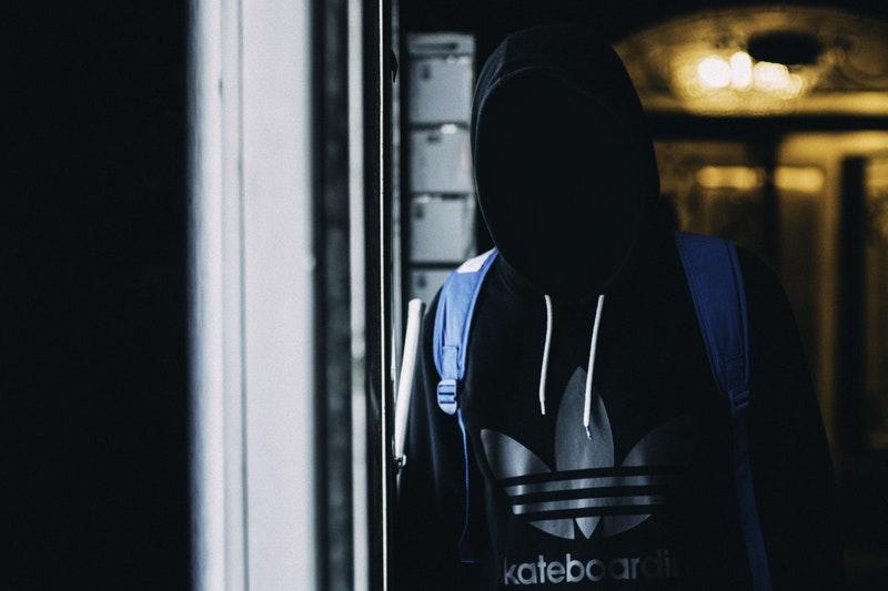 Libertyland : Retour sur la fermeture du site de téléchargement illégal