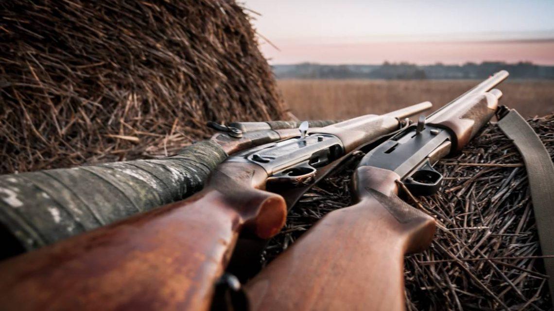 Fusil de chasse : comment le choisir ?